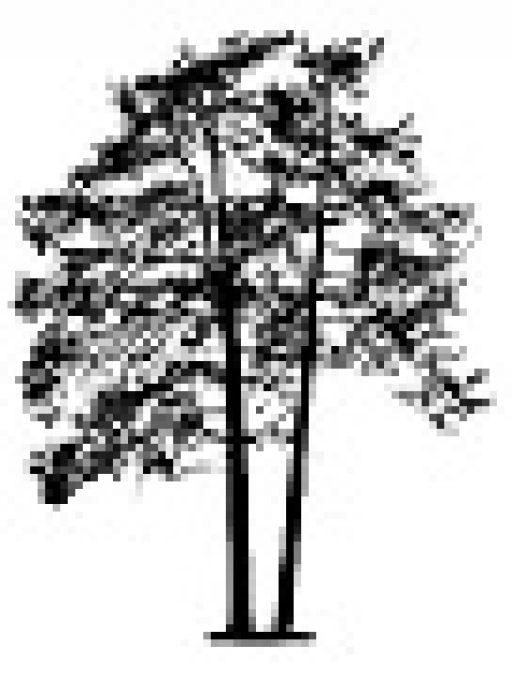 BRF Skogalundshöjden
